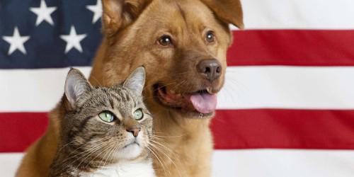 pets_flag